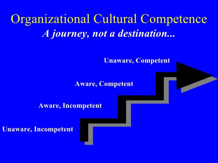 Cultural Competence in Healthcare (Rue, 2002)