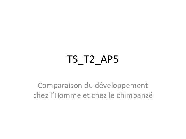 TS_T2_AP5 Comparaison du développement chez l'Homme et chez le chimpanzé