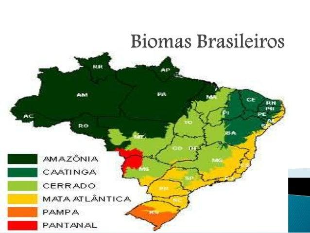  Cerrado é um bioma do tipo savana que ocorre no Brasil, constituindo-se num dos seis grandes biomas brasileiros.  A pri...