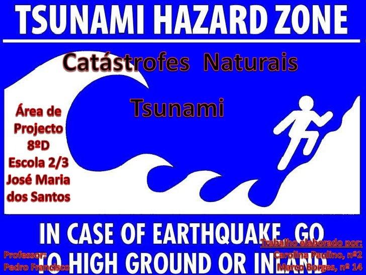 Catástrofes  Naturais<br />Tsunami<br />Área de Projecto 8ºD         <br />Escola 2/3 José Maria dos Santos<br />Trabalho ...