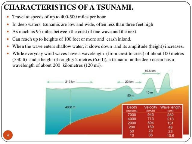 characteristics of the tsunami We encourage a more standardized reporting of tsunami-deposit characteristics and request that the tsunami community report results to the compilers using the.
