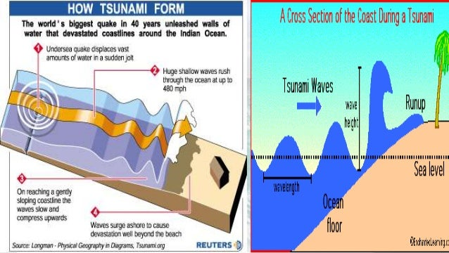 earthquake causes and effects essays Free essay: the cause and effect of the tsunami in thailand in 2004 the tsunami in thailand that occurred on december 26, 2004, was by far the largest.