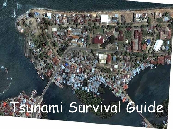 Tsunami Survival Guide