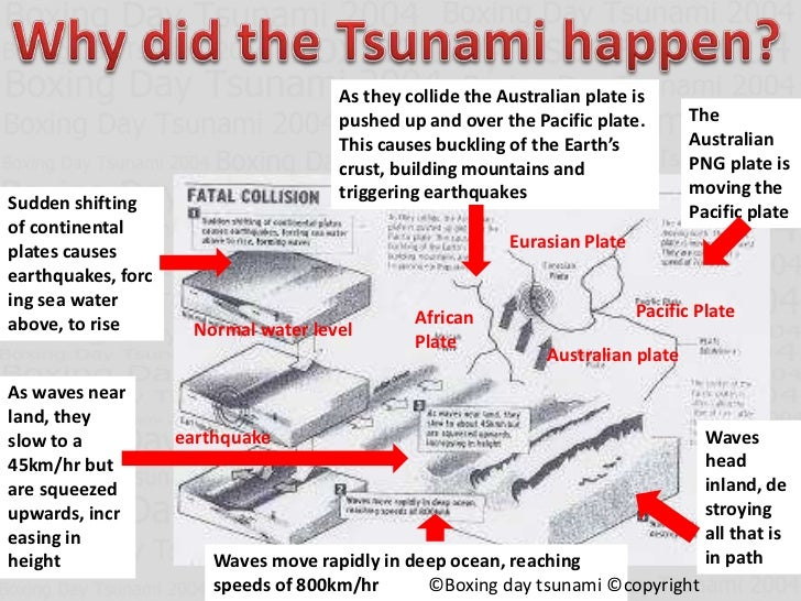 the 2004 asian of causes tsunami