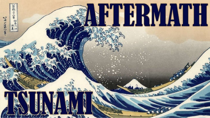 Tsunami - Aftermath