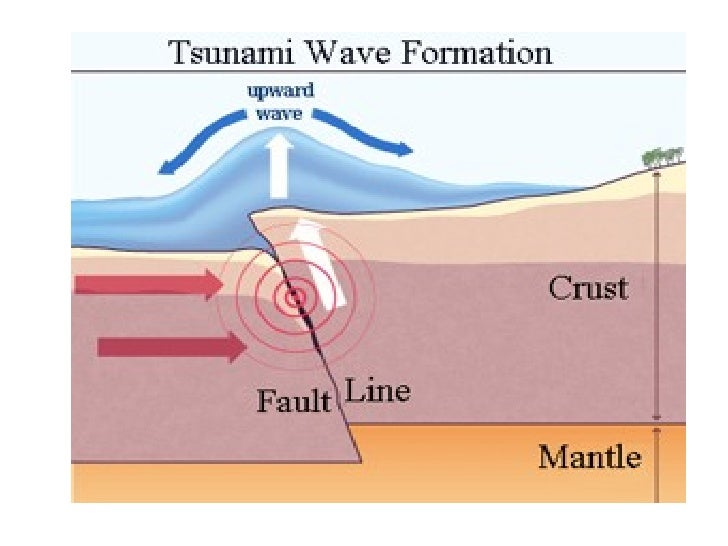 what causes a tsunami to form - DriverLayer Search Engine