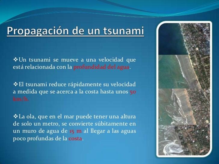  La peligrosidad de los tsunamis radica en que, no son sentidos por los barcos en alta mar.    Se suelen producir en zon...