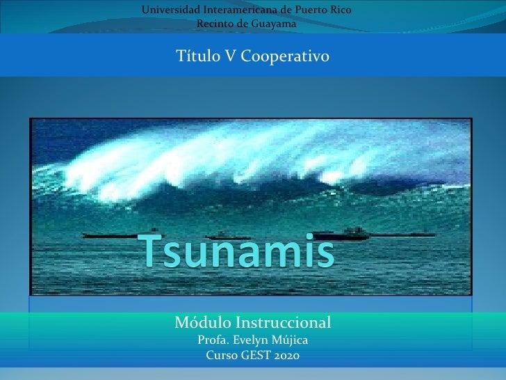Universidad Interamericana de Puerto Rico          Recinto de Guayama      Título V Cooperativo      Módulo Instruccional ...