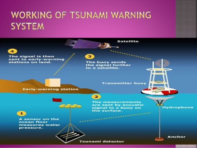 tsunami early warning systems essay The urgent need for early warning systems is the most poignant lesson for ronald jackson, head of the caribbean disaster emergency manage-ment agency, following warnings of possible tsunami surges throughout the regionjamaica had been monitoring.