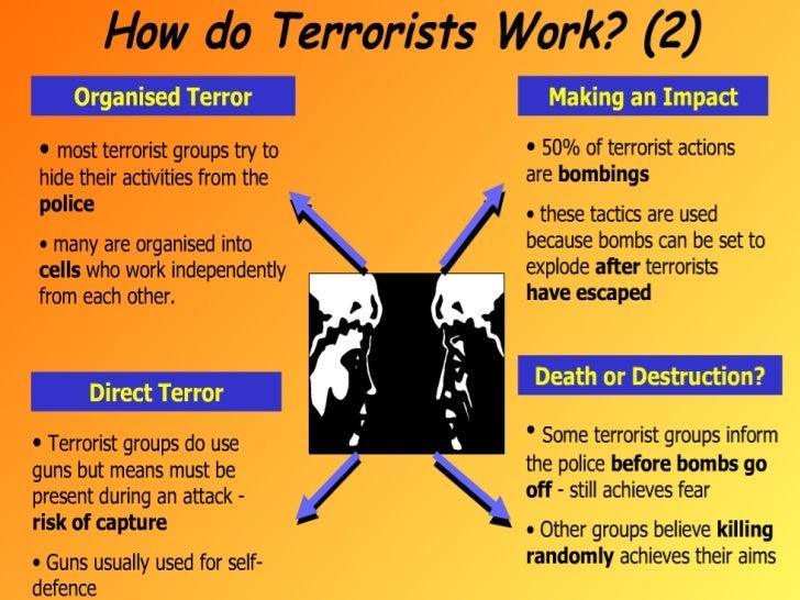 Terrorism In Jammu And Kashmir Essay - image 8