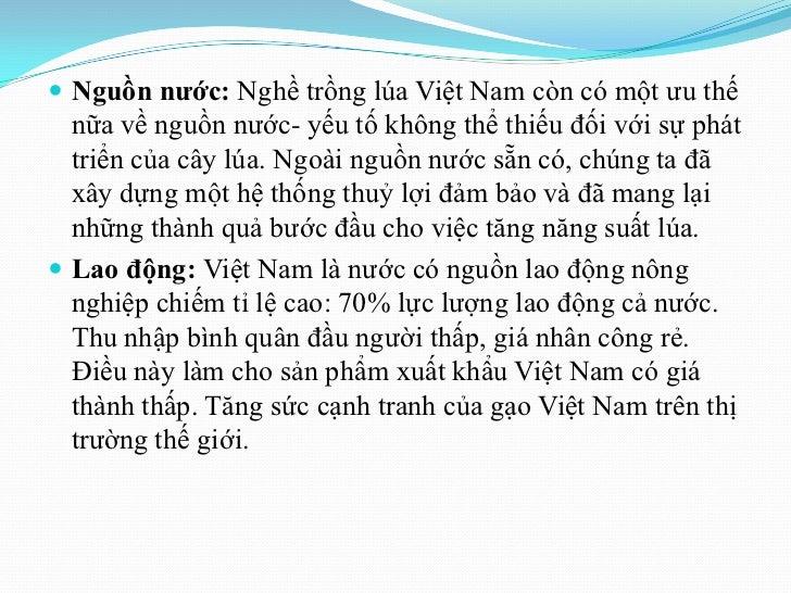  Nguồn nƣớc: Nghề trồng lúa Việt Nam còn có một ưu thế  nữa về nguồn nước- yếu tố không thể thiếu đối với sự phát  triển ...