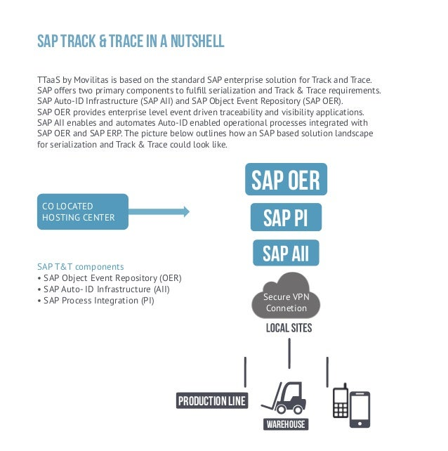 Serialization with SAP Auto ID Infrastructure (AII) Part 1