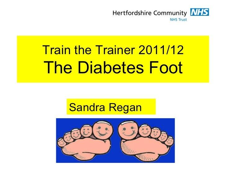 Train the Trainer 2011/12The Diabetes Foot    Sandra Regan