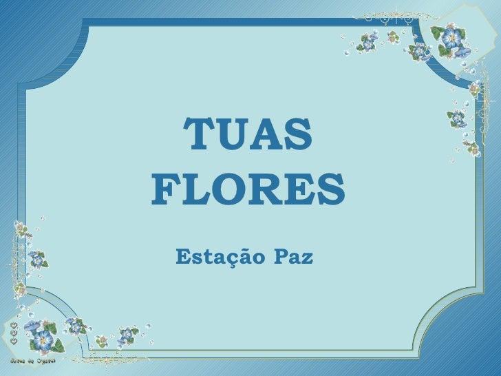 TUAS FLORES TUAS FLORES TUAS FLORES TUAS FLORES Estação Paz