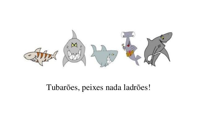 Tubarões, peixes nada ladrões!
