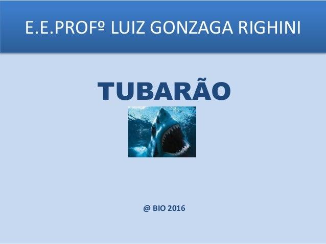 E.E.PROFº LUIZ GONZAGA RIGHINI TUBARÃO @ BIO 2016