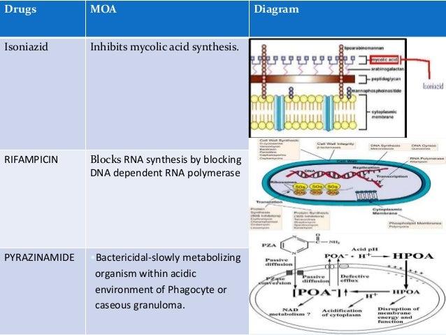 Dosage regimen  Intensive phase + continuation phase  HREZ (2 months) + HRE (4 months)