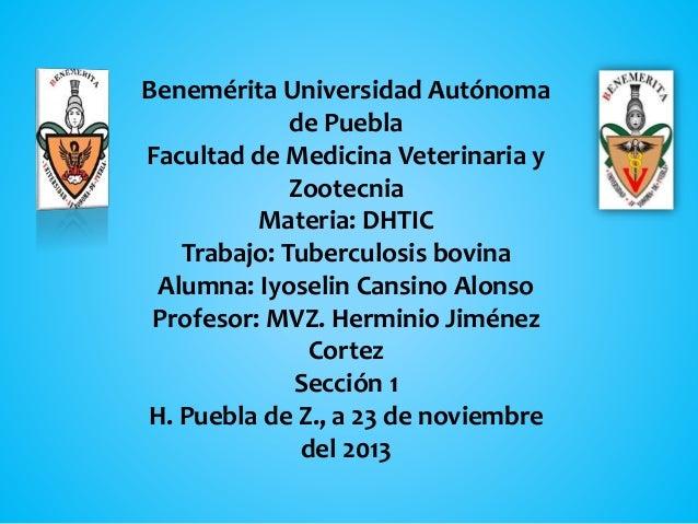 Benemérita Universidad Autónoma de Puebla Facultad de Medicina Veterinaria y Zootecnia Materia: DHTIC Trabajo: Tuberculosi...