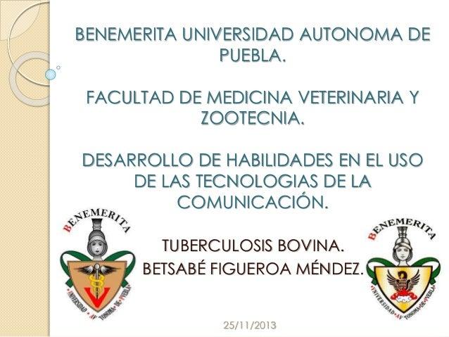 BENEMERITA UNIVERSIDAD AUTONOMA DE PUEBLA. FACULTAD DE MEDICINA VETERINARIA Y ZOOTECNIA.  DESARROLLO DE HABILIDADES EN EL ...