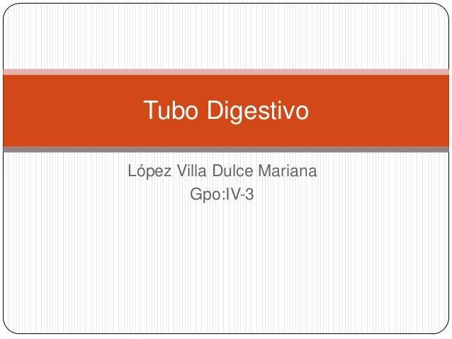 López Villa Dulce MarianaGpo:IV-3Tubo Digestivo