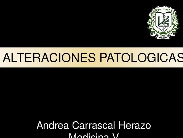ALTERACIONES PATOLOGICAS DEL TRACTO GASTROINTESTINAL Andrea Carrascal Herazo