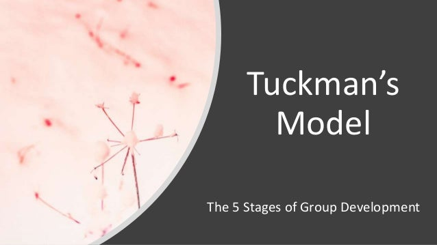 Tuckman's Model The 5 Stages of Group Development