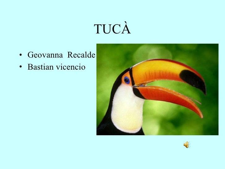 TUCÀ <ul><li>Geovanna  Recalde </li></ul><ul><li>Bastian vicencio </li></ul>