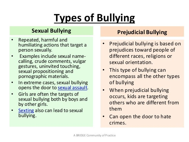 TU Dealing with Bullying Presentation Dr Moeniera Moosa
