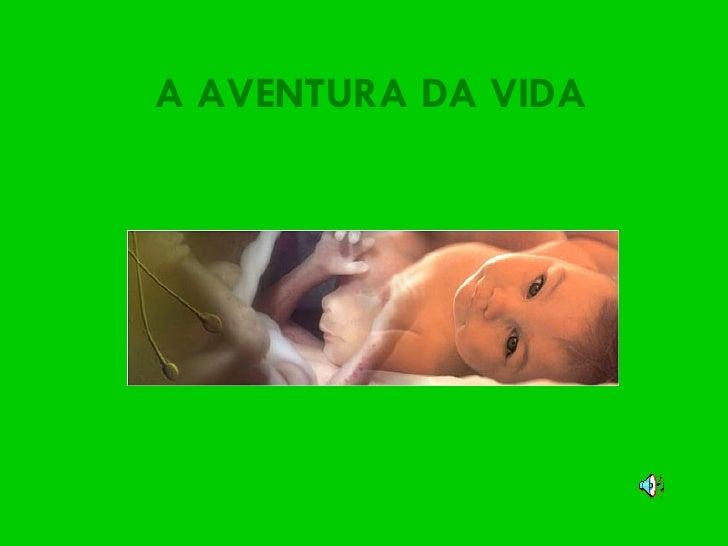 A AVENTURA DA VIDA