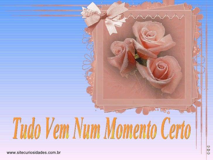 Tudo Vem Num Momento Certo www.sitecuriosidades.com.br