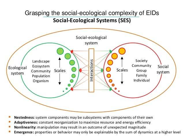 A look at the medical ecology of ebola