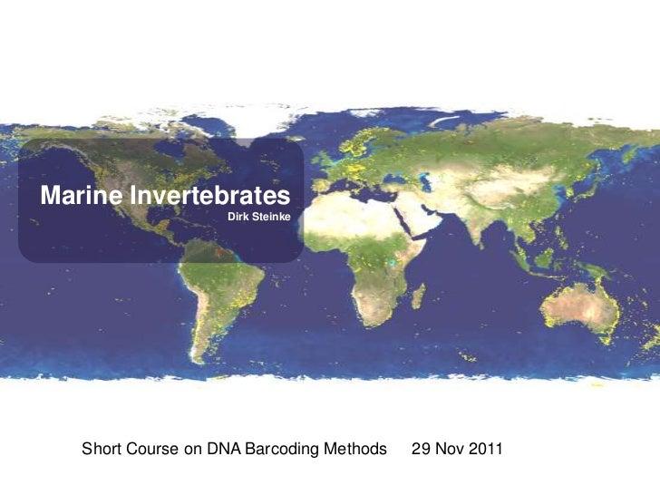 Marine Invertebrates                    Dirk Steinke   Short Course on DNA Barcoding Methods   29 Nov 2011