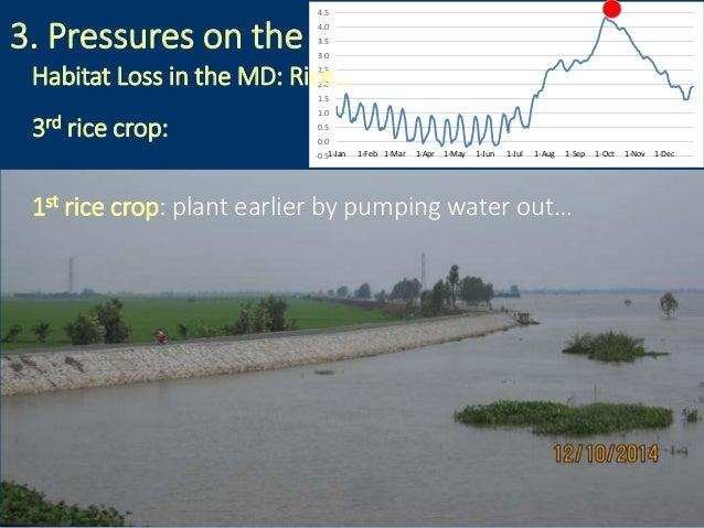 3. Pressures on the fisheries: -0.5 0.0 0.5 1.0 1.5 2.0 2.5 3.0 3.5 4.0 4.5 1-Jan 1-Feb 1-Mar 1-Apr 1-May 1-Jun 1-Jul 1-Au...