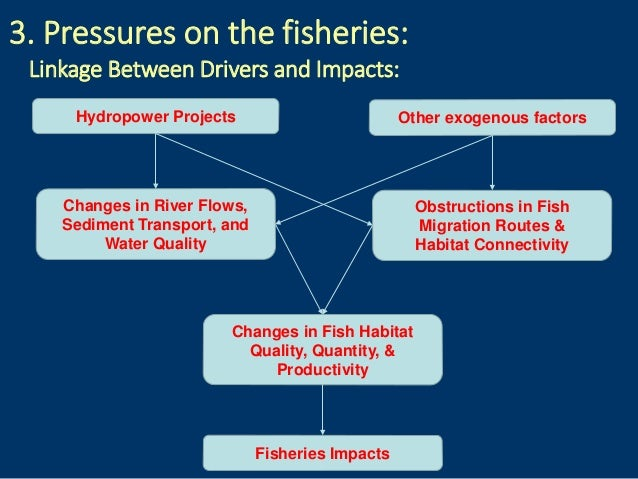 3. Pressures on the fisheries: Linkage Between Drivers and Impacts: Hydropower Projects Other exogenous factors Changes in...