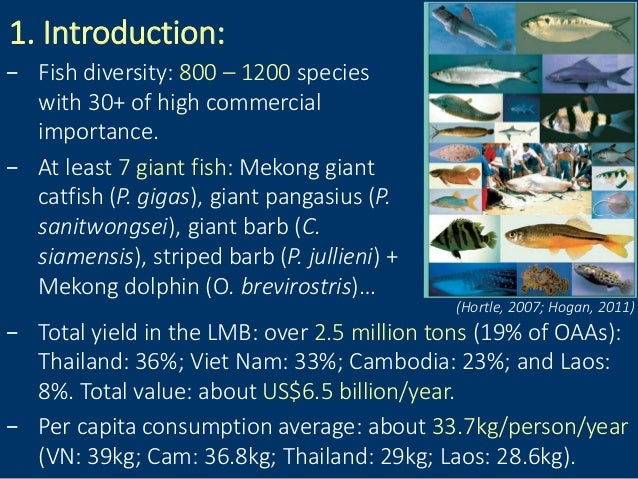 1. Introduction: − Total yield in the LMB: over 2.5 million tons (19% of OAAs): Thailand: 36%; Viet Nam: 33%; Cambodia: 23...