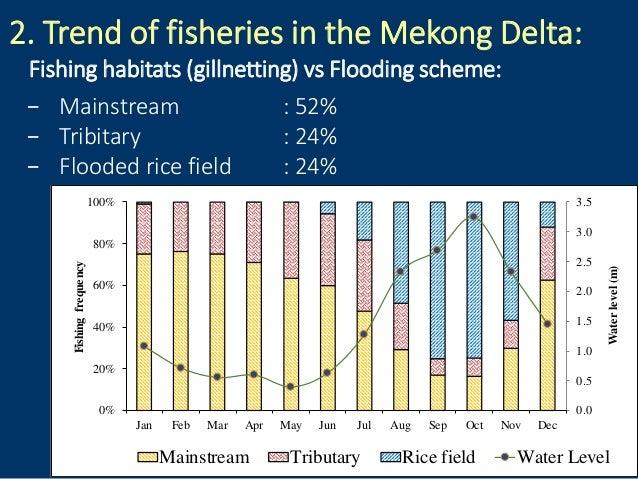 2. Trend of fisheries in the Mekong Delta: Fishing habitats (gillnetting) vs Flooding scheme: − Mainstream : 52% − Tribita...