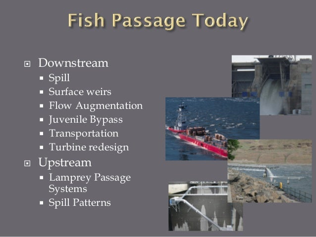  Fish Conservation=Power Generation  Government/Legal Driven  Treaties, NW Power Act, Endangered Species  Broad goals ...
