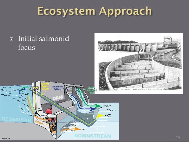  Initial salmonid focus  Salmon passage non-salmon passage 14 NOAA 14