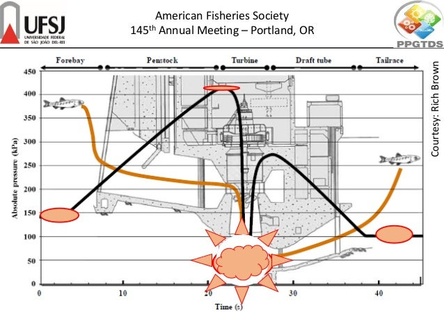 Courtesy:RichBrown American Fisheries Society 145th Annual Meeting – Portland, OR