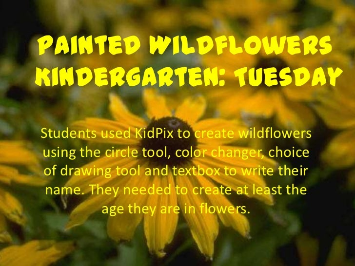 Painted WildflowersKindergarten: TuesdayStudents used KidPix to create wildflowersusing the circle tool, color changer, ch...