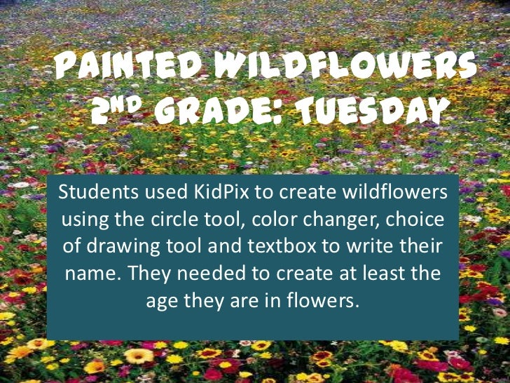 Painted Wildflowers  2nd Grade: TuesdayStudents used KidPix to create wildflowersusing the circle tool, color changer, cho...