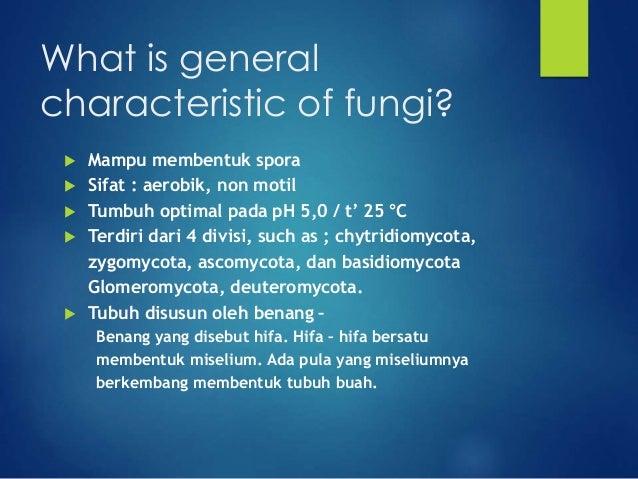 Sifat mycelium basidiomycota asexual reproduction