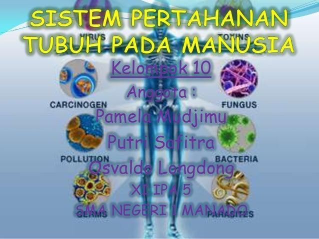 Mekanisme Pembentukan Sistem Kekebalan Dalam Imunisasi