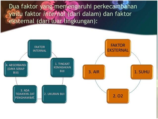 Dua faktor yang memengaruhi perkecambahan  yaitu faktor internal (dari dalam) dan faktor  eksternal (dari luar lingkungan)...