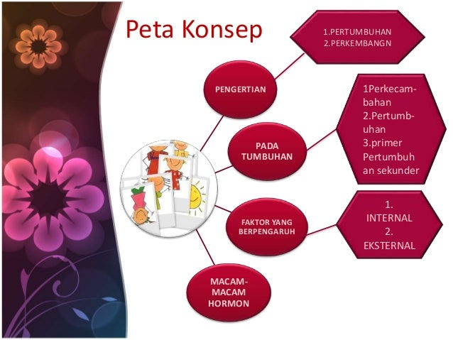Peta Konsep  PENGERTIAN  PADA  TUMBUHAN  FAKTOR YANG  BERPENGARUH  MACAM-MACAM  HORMON  1.PERTUMBUHAN  2.PERKEMBANGN  1Per...