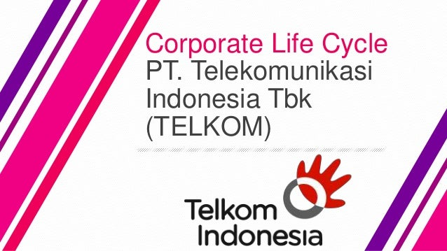Corporate Life Cycle of PT. Telkom Indonesia