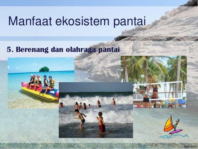 Ekosistem Pantai Terumbu Karang