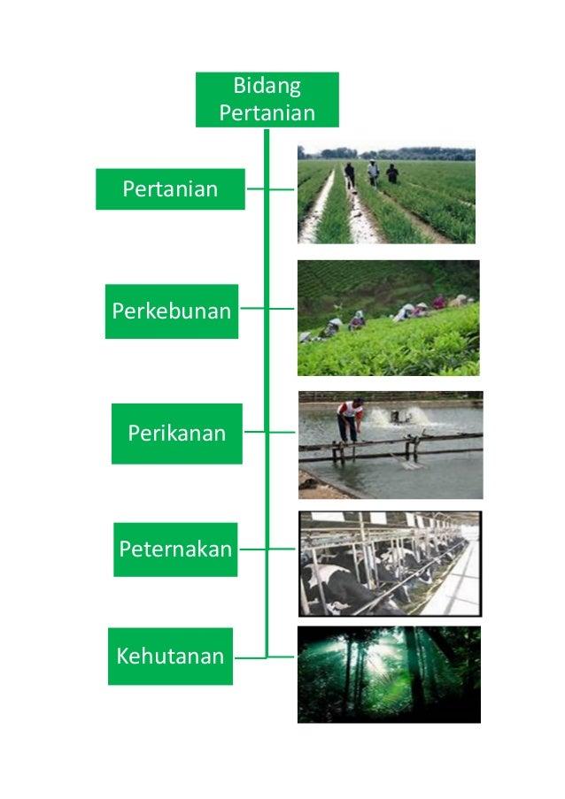Sistem perdagangan penggajian non pertanian