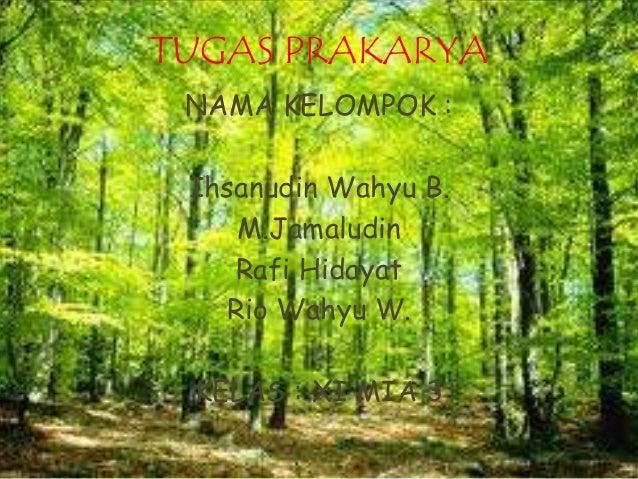 TUGAS PRAKARYA  NAMA KELOMPOK :  Ihsanudin Wahyu B.  M.Jamaludin  Rafi Hidayat  Rio Wahyu W.  KELAS : XI MIA 3