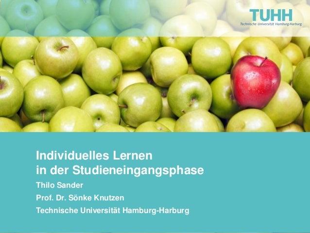 Individuelles Lernen in der Studieneingangsphase Thilo Sander Prof. Dr. Sönke Knutzen Technische Universität Hamburg-Harbu...